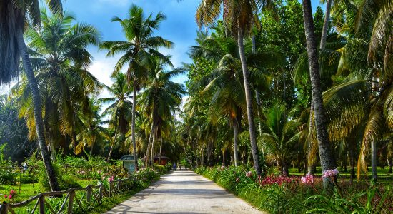 DAY 3 in La Digue Itinerary