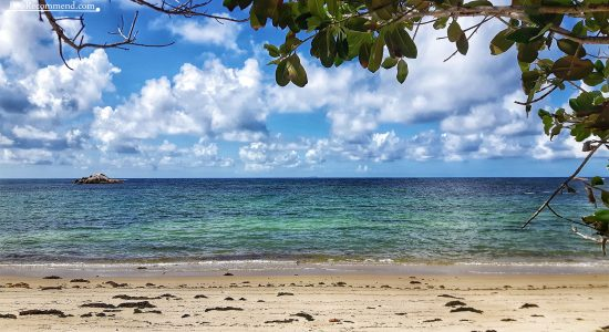 Top 10 things to do in Praslin