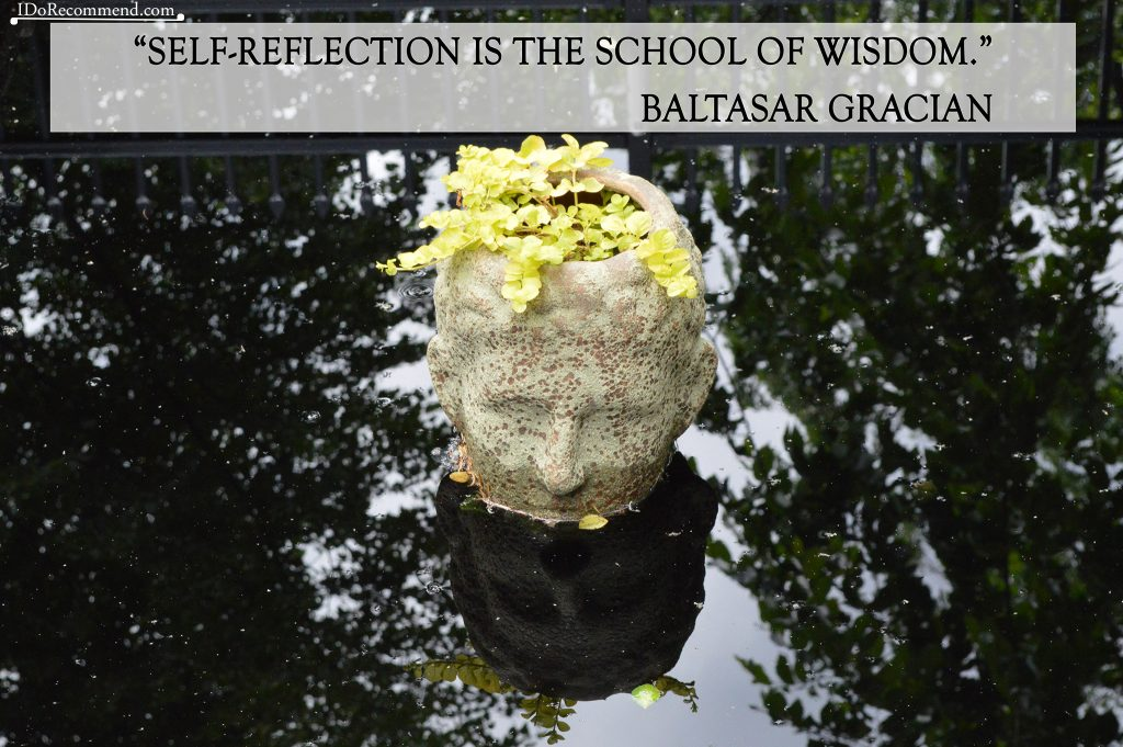 "Quote ""Self-reflection is the school of wisdom"" (photo from USA Denver Botanic Gardens)"