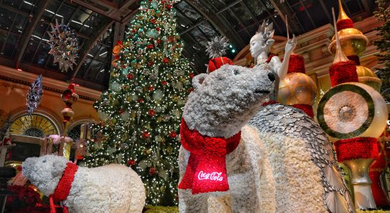 Top reasons to visit Las Vegas in December