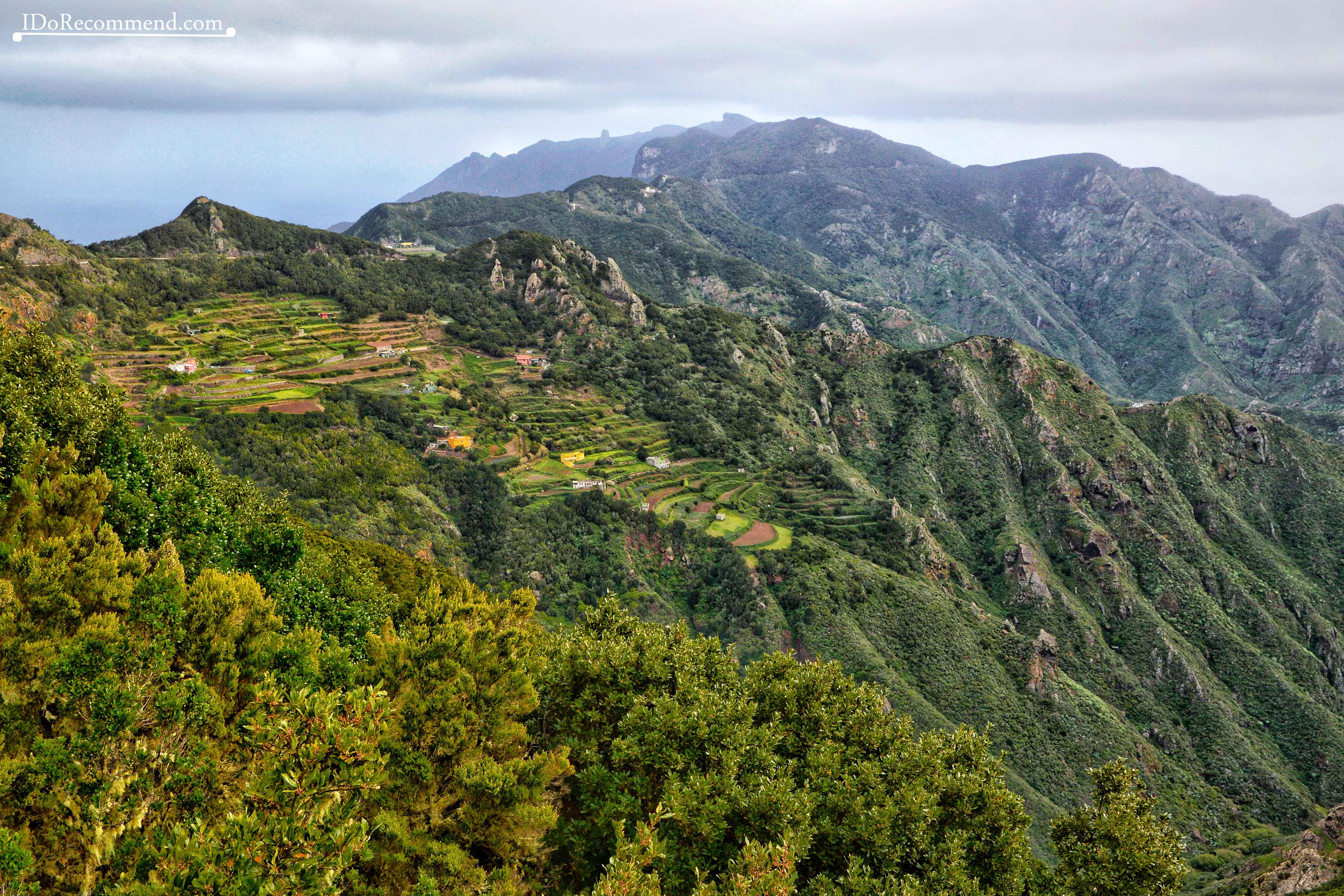 _IDoRecommend_Spain_Canary_Tenerife_Feb_Anaga_Park_Cabezo_Del_Viento_trail