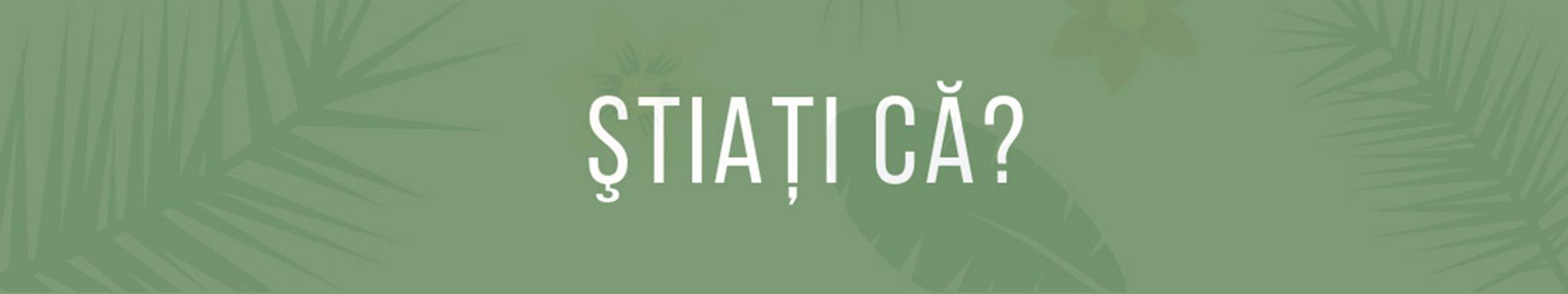 StiatiCa banner